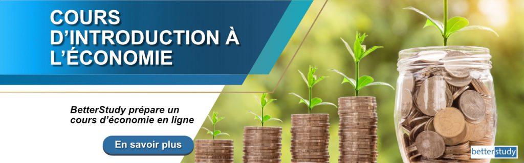 cours en ligne d'introduction en economie